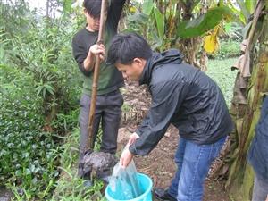 Lấy mẫu đất và chế bị mẫu gia cố